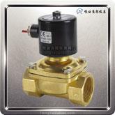 2W系列水(热水)气电磁阀